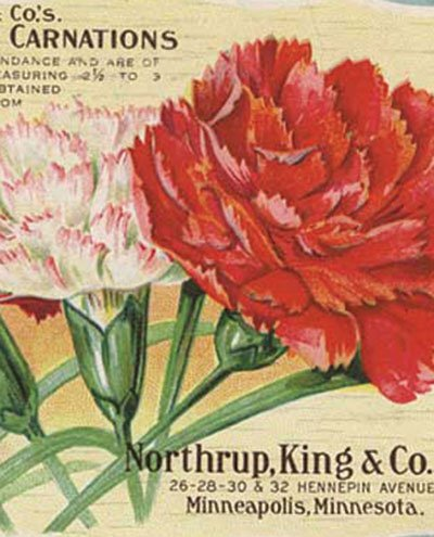 Northrup King