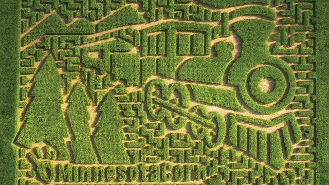Sever's Fall Festival Corn Maze