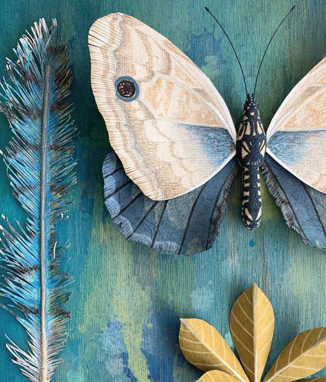 large butterfly and a blue feather