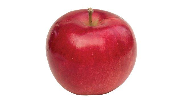 State Fair Apple » 4.4