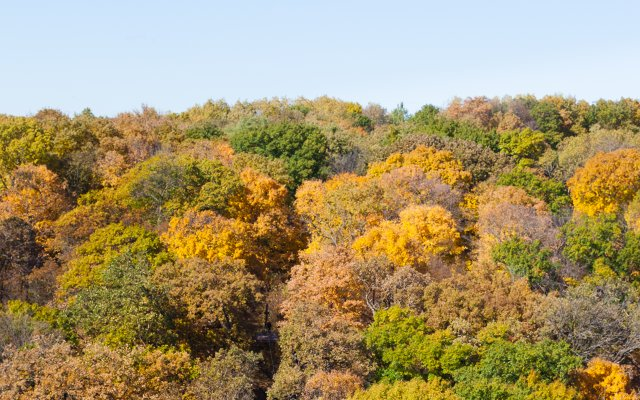Fall Colors Minnesota 2020.10 Destinations To See Peak Fall Colors In Minnesota Mpls