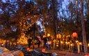 Minnesota Zoo Jack-O-Lantern Spectacular