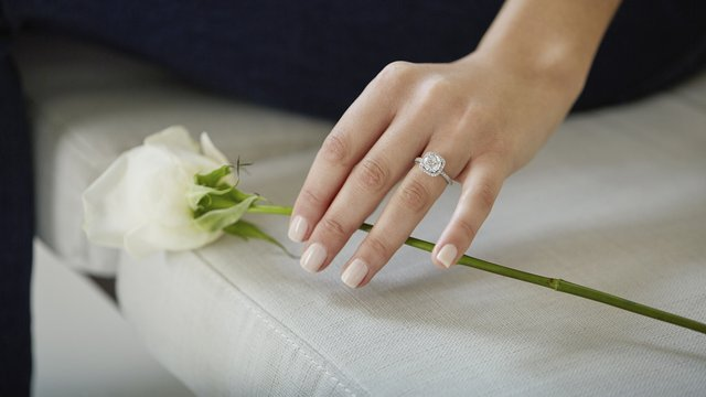 woman's hand holding white rose