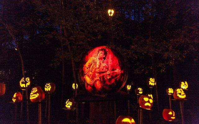 Prince pumpkin at Minnesota Zoo Pumpkin Trail