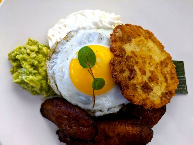 over easy egg on toast with a side of guacamole and hash browns