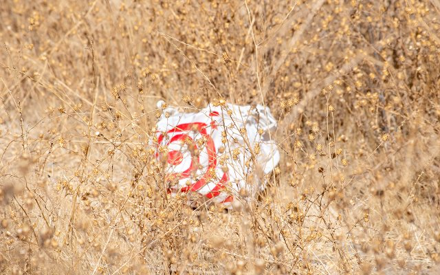 Target plastic bag
