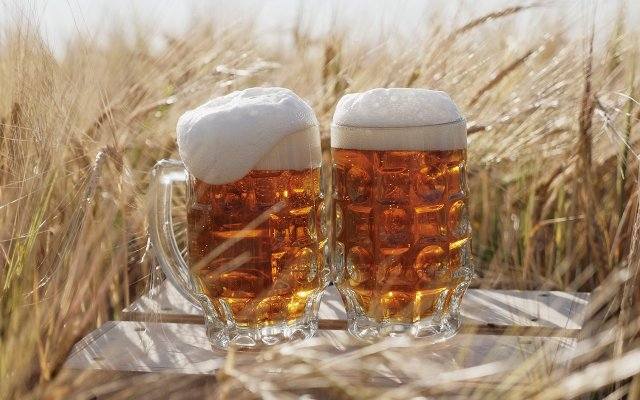 beergrain.jpg
