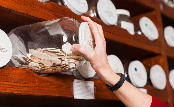 Herbal jars at Northwestern Health Sciences University