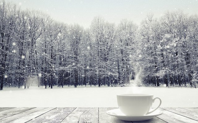 Cup in Winter Landscape