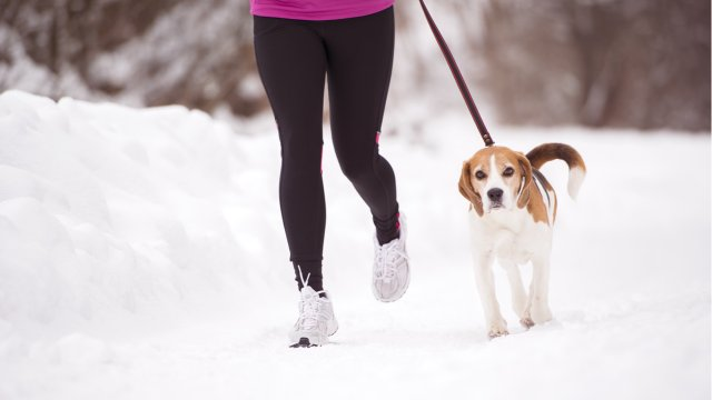 woman runs with dog in snow