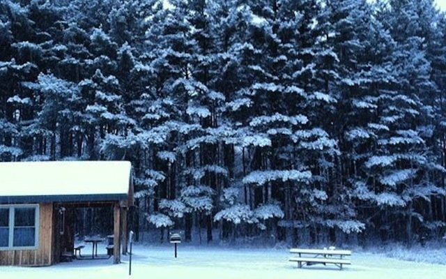 WinterInMinnesota.jpg