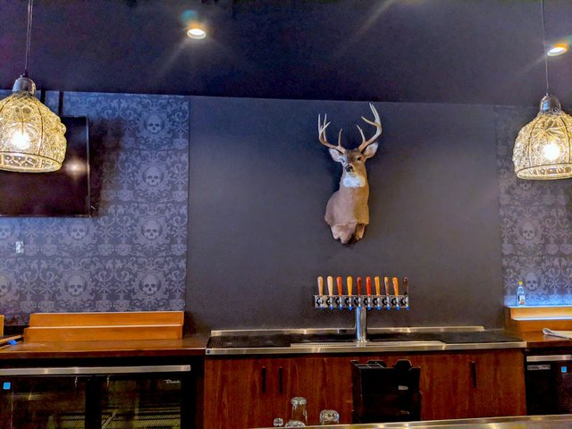 Deer head on the back bar of Pajarito.