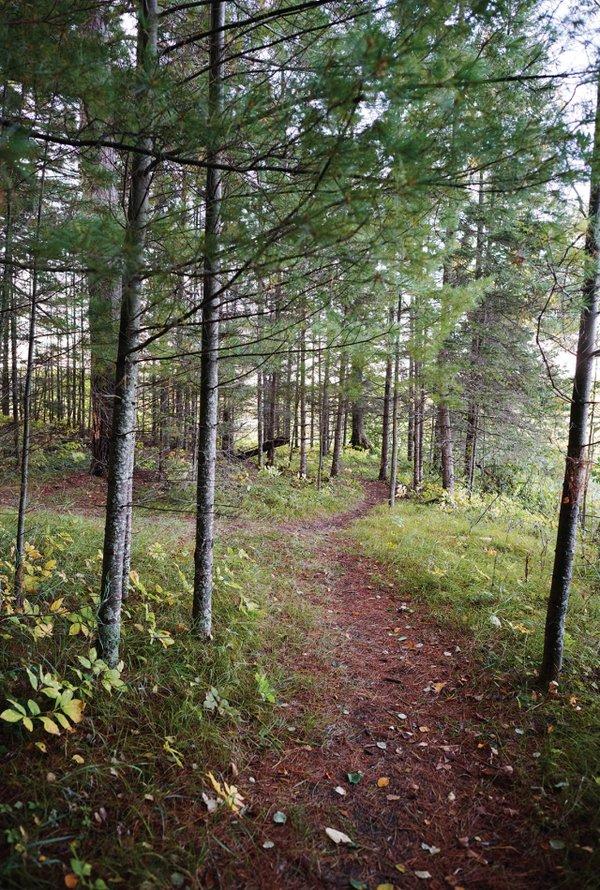 Schoolcraft State Park trail