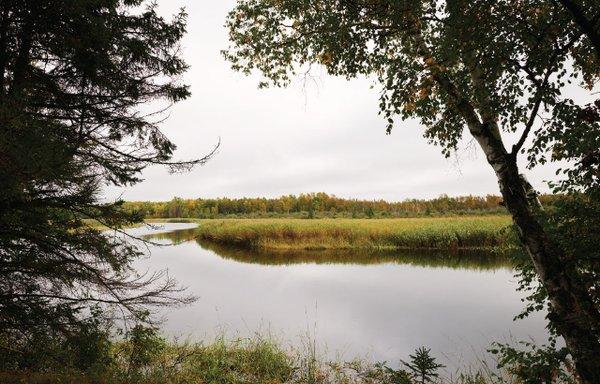 Schoolcraft State Park pond