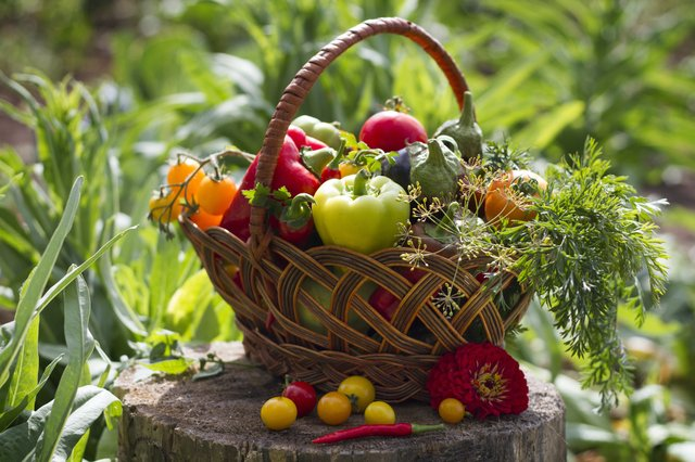 Ms. B's Harvest Basket