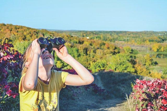 Birdwatching in Maplewood