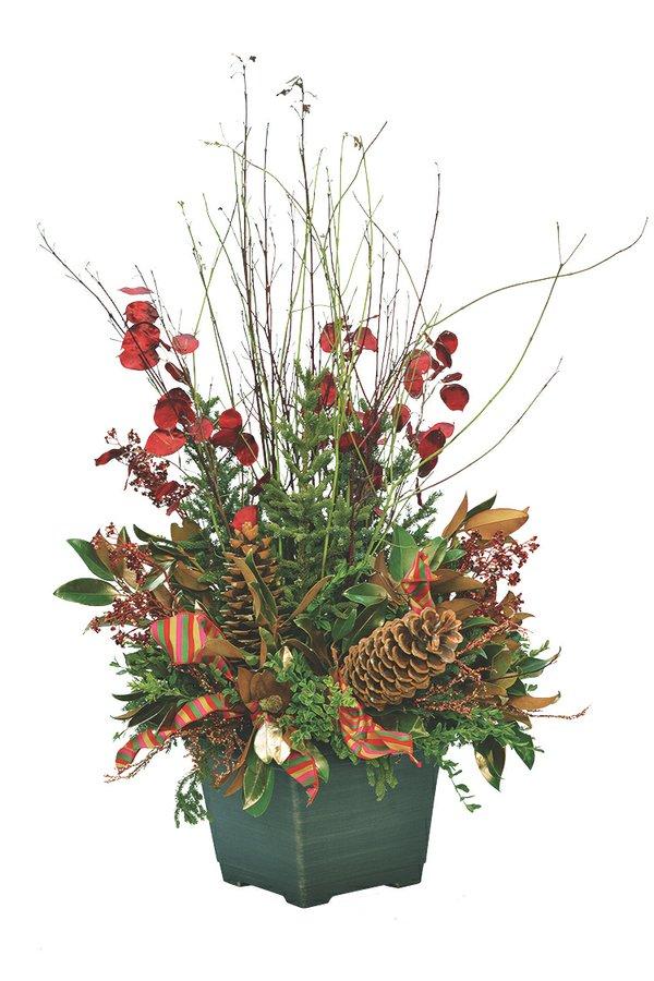 Spruce Top Planter – Ms. B November