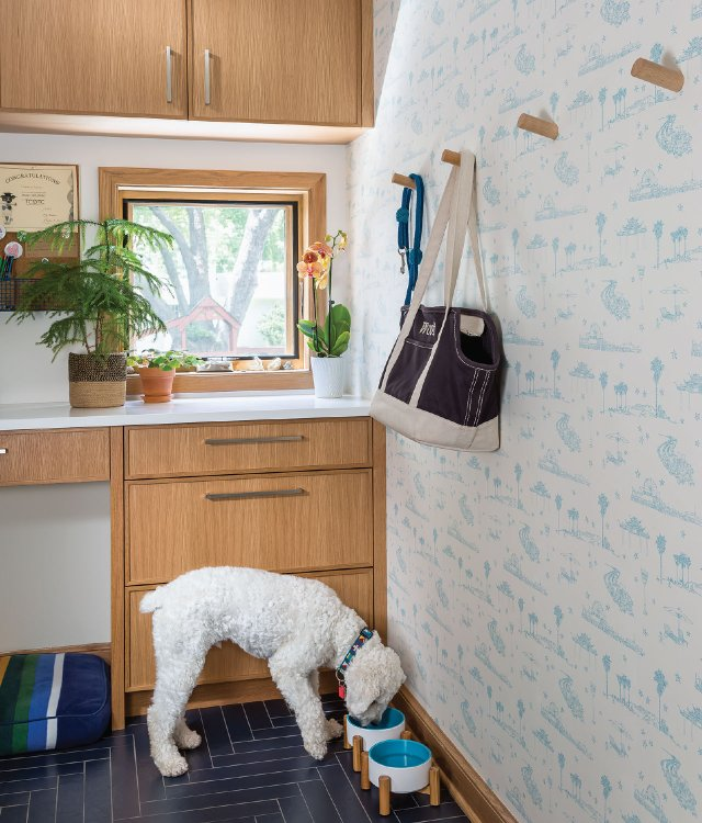 dog eating in the mudroom