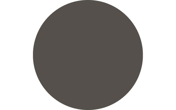 Sherwin-Williams paint color, Urbane Bronze