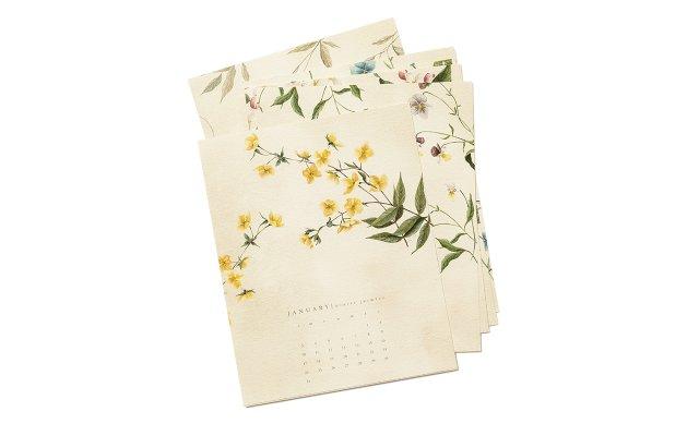 Esther Clark botanical calendar
