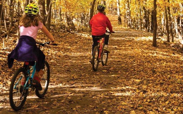 Kids on bikes in Autumn