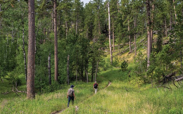 Hikers on trail to Black Elk Peak
