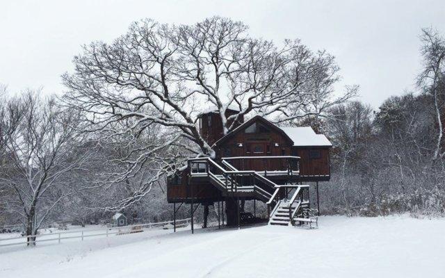 Treehouse Lofty Lodge exterior winter