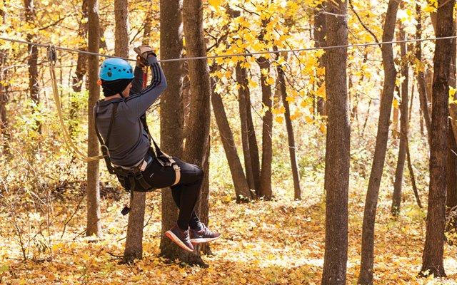 Ziplining in Autumn