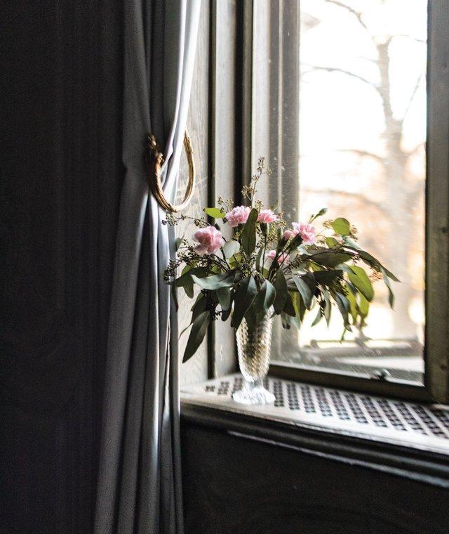flower on windowsill