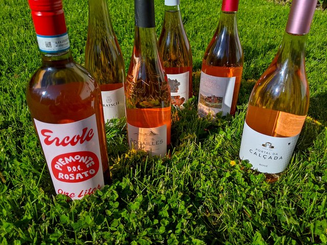 bottles of pink wine in the grass