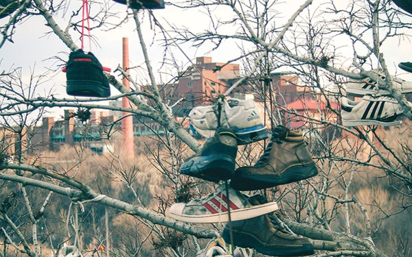 lots of shoes hanging from trees