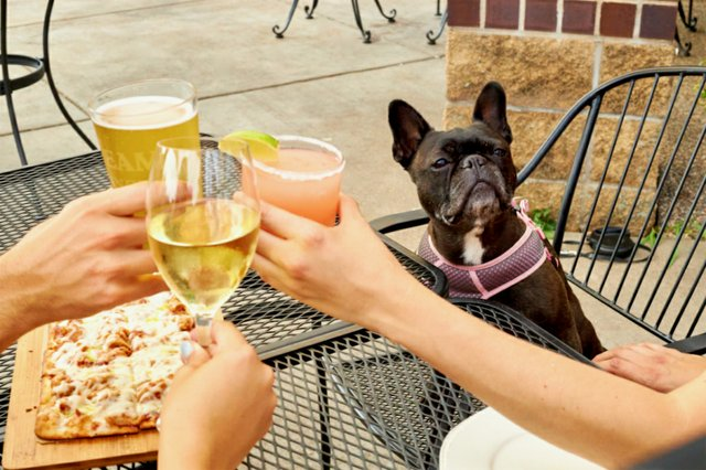 Weekday happy hour on the Mason Jar Kitchen patio. Friendly dogs are welcome.