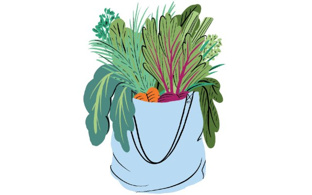 Illustration of a bag filled with produce