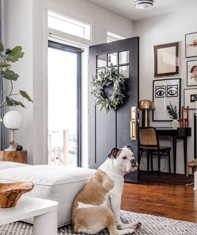 Dog sitting in living room with front door open