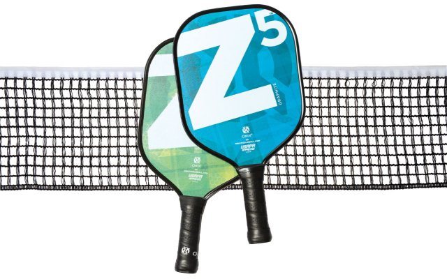 Pickleball paddles and net