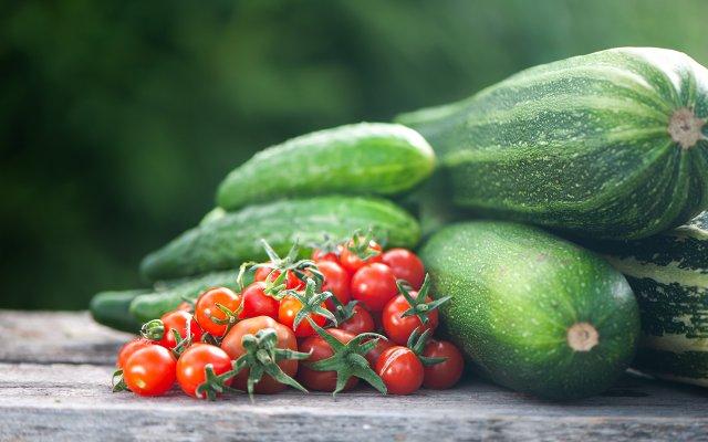 Zucchini and Tomatoes