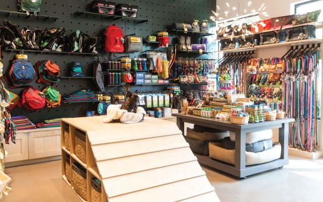 inside dog outfitters