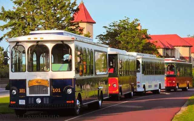 Trolleys-corp-1.jpg