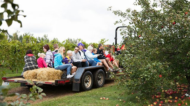 Families at Aamodts Apple Orchard