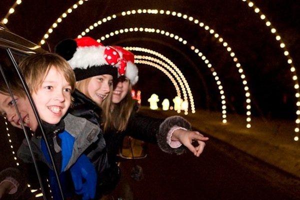 HolidayLights1.jpg