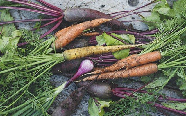 0520-feed_carrots640.jpg