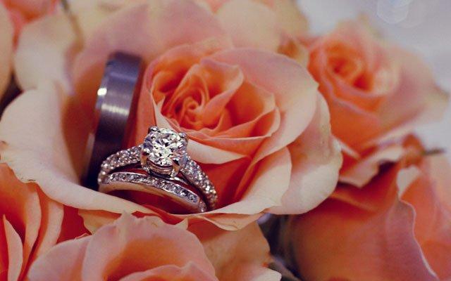Roses_640s.jpg